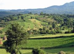 Peisaj Maramureș